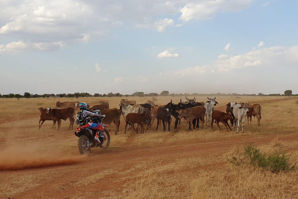 Kalahari Rally SuperSpecial: navigatie blijkt lastig