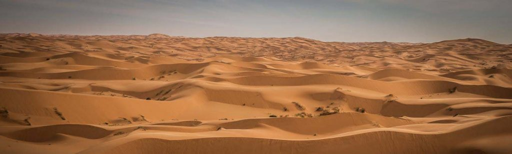 Algeria Eco Race 2021: details bekend